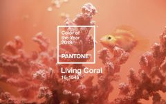 Pantone Color of the Year Pantone Color of the Year for 2019 Will Be the Warm Living Coral Tone featured 7 240x150